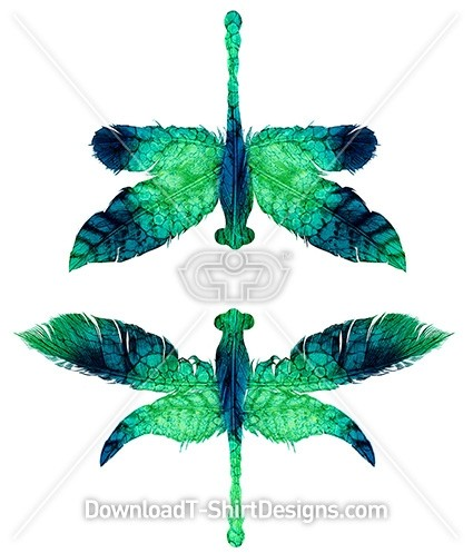 Natural Abstract Texture Feather Dragonflies